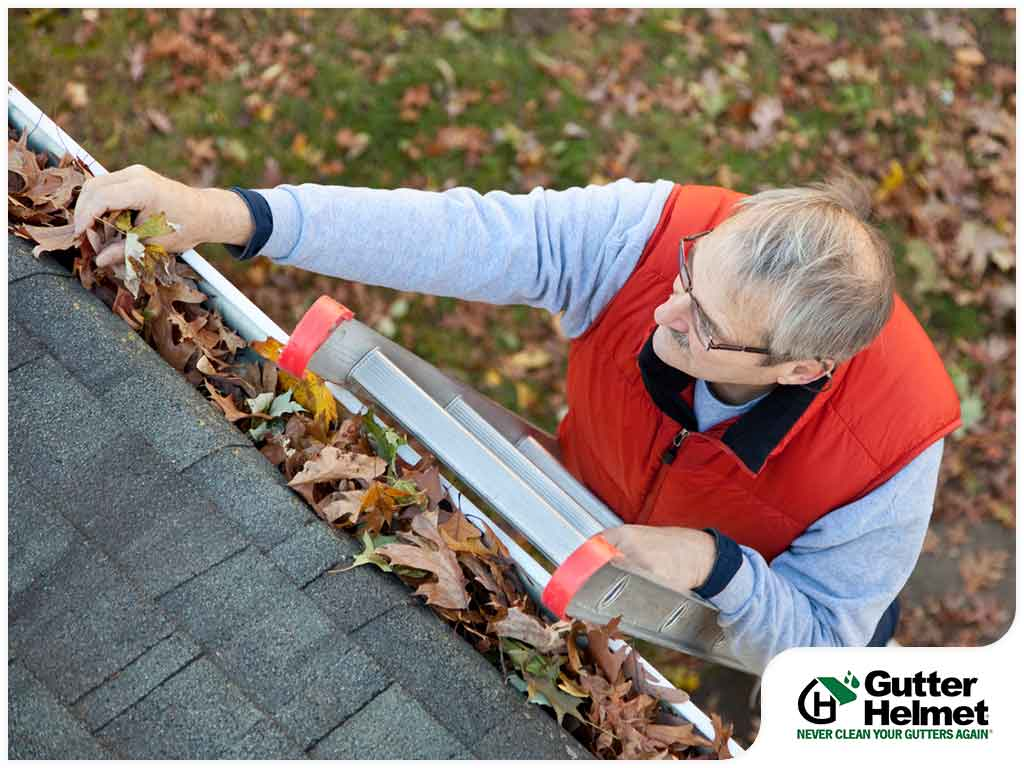 Gutter Cleaning: Things You Should Know Before Hiring a Pro